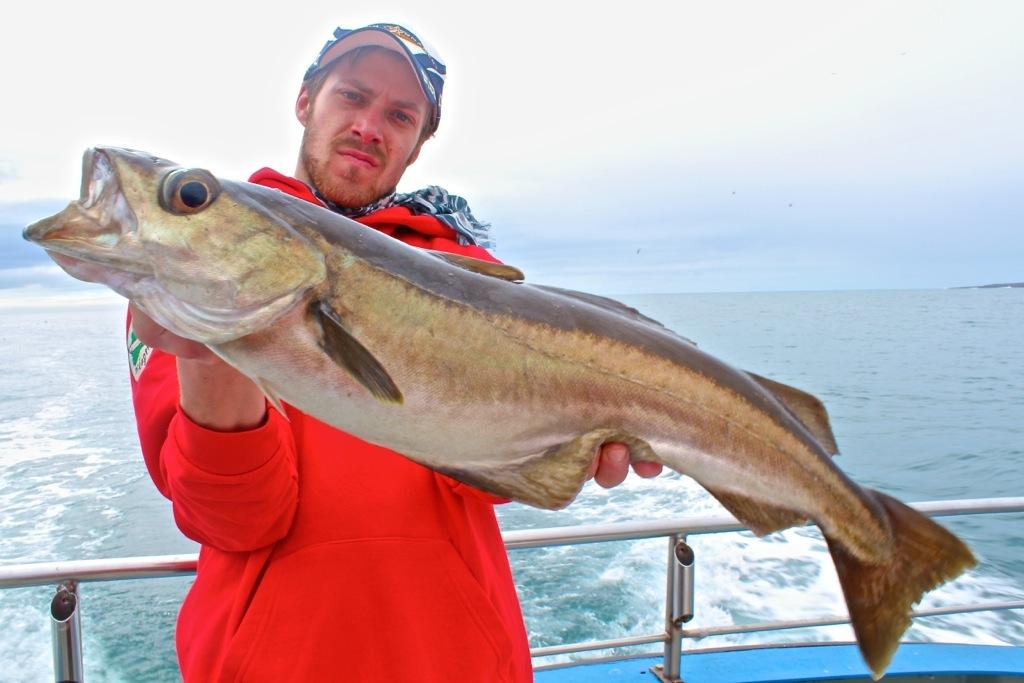 pesca-al-merluzzo