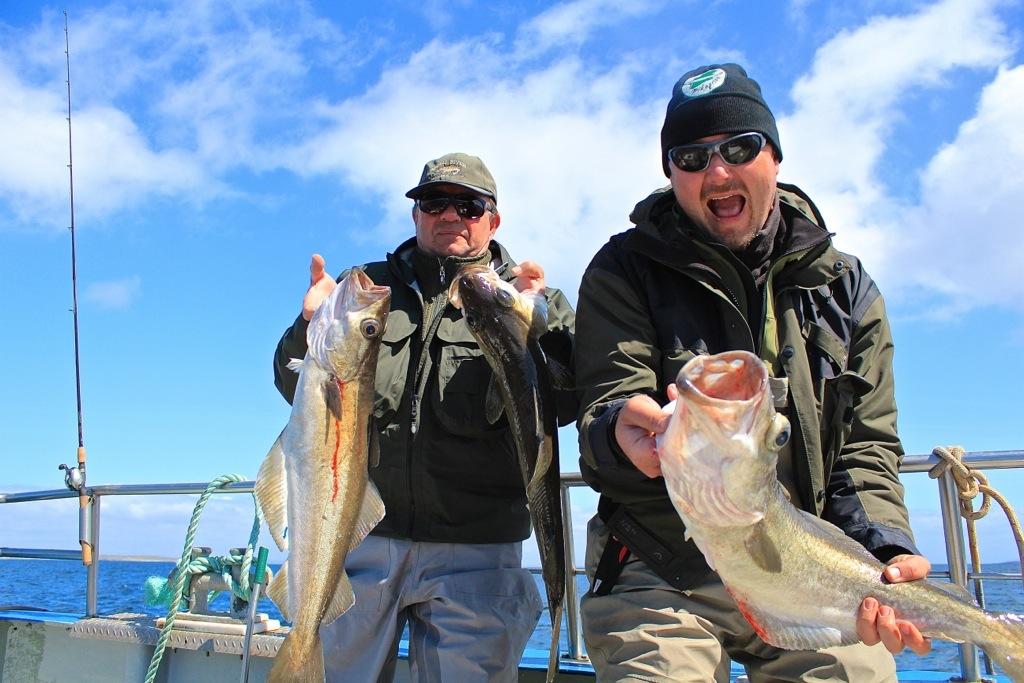 pesca-irlanda
