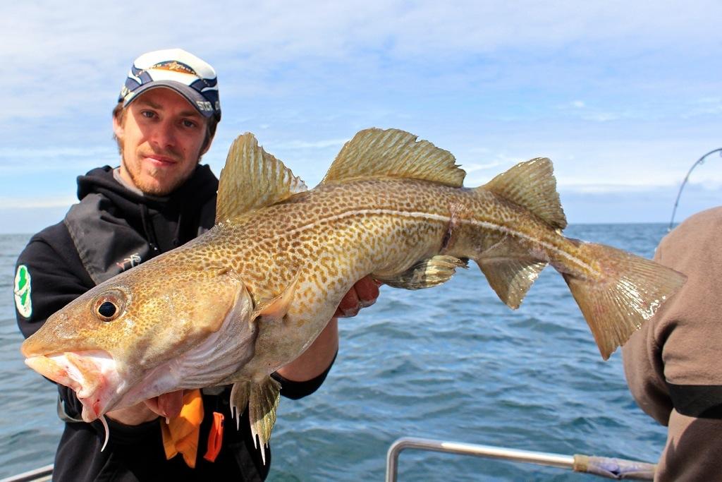 pesca-merluzzo