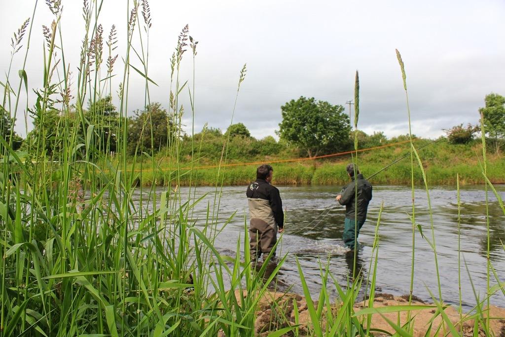 pescare-a-mosca