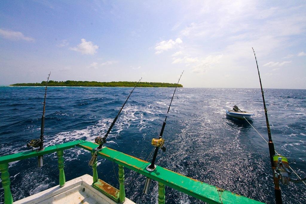 traina-maldive