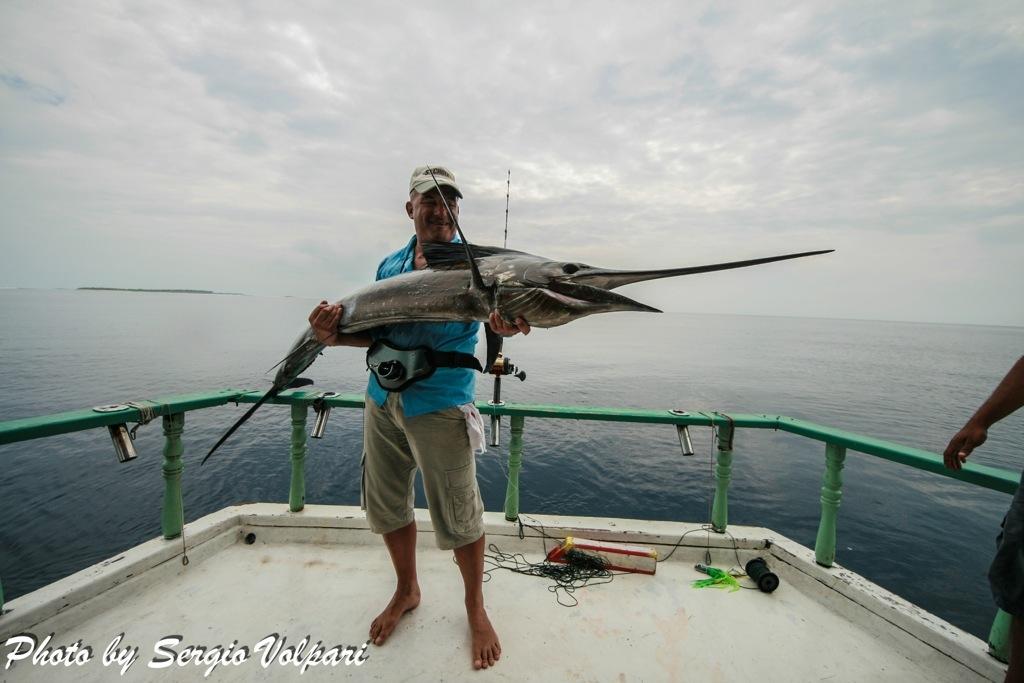 pesca-pesce-vela