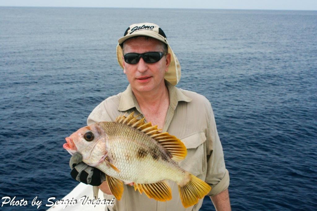 pesci-maldiviani