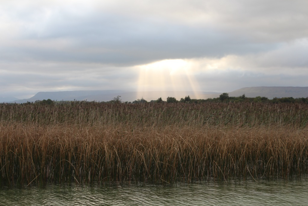 pesca-in-irlanda