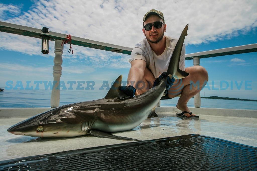 pesca-squalo