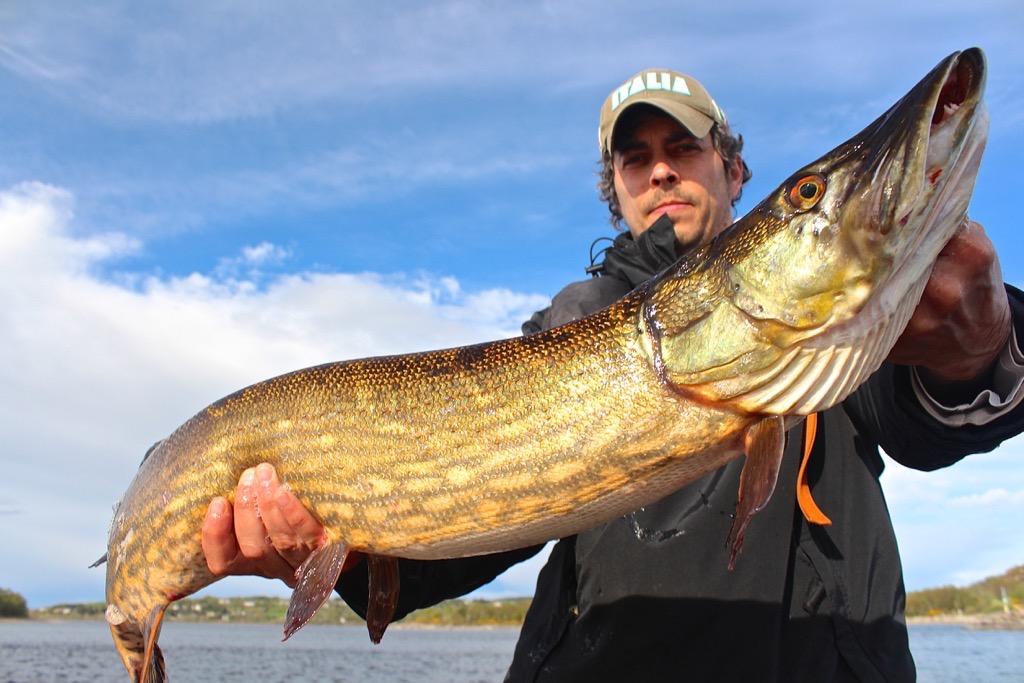 pescare-in-irlanda