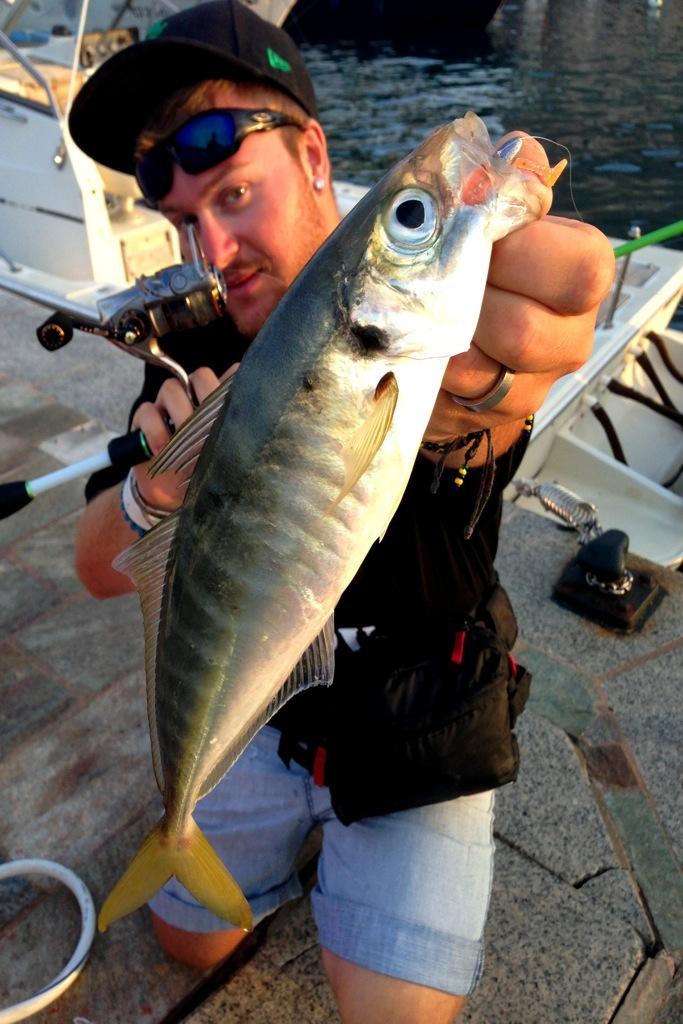 sugarello-a-rockfishing